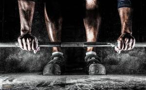 Muskel Entwickler